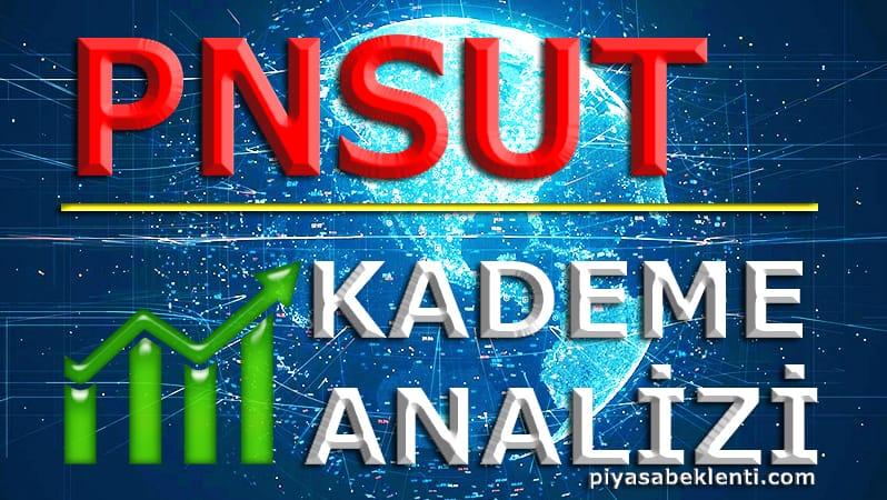 PNSUT Kademe Analizi